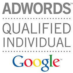 google adwords qualified individual - SEO & SEM. Posicionamiento Web